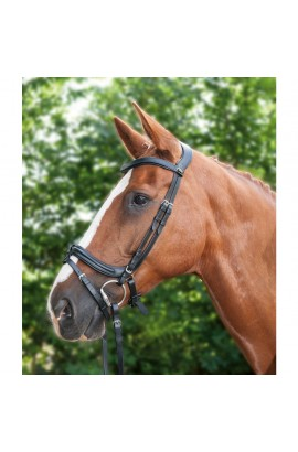 Bridle + reins -Anatomic I- black
