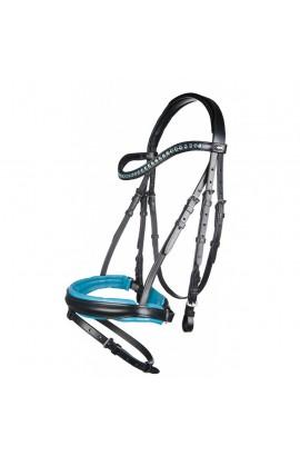 !Bridle + reins -Colour- turquoise