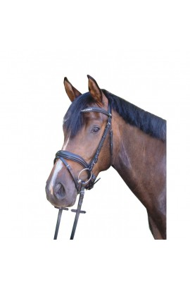 bridle + reins -bea- with gel padding