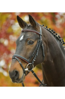 Bridle + reins for pony -Star Diamond- red
