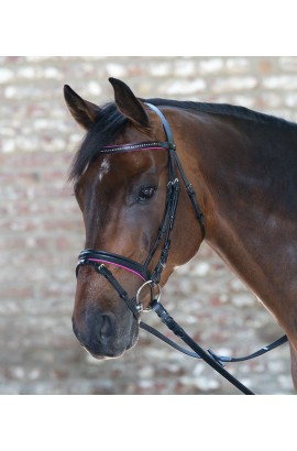 Bridle + reins for shetland pony -Star Diamond- fuchsia