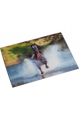 3d postcard -gallop-