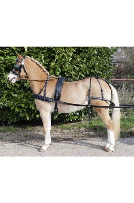 Single harness -economic-