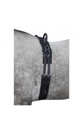 Lunge roller -Canvas-