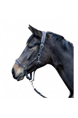 -space- head collar