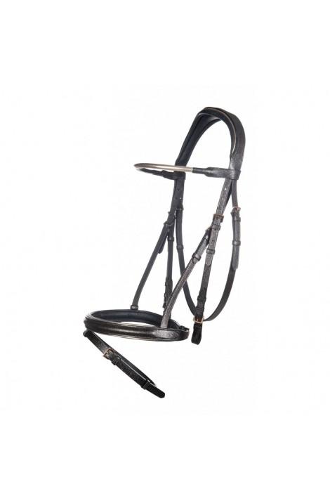 -space- bridle + reins