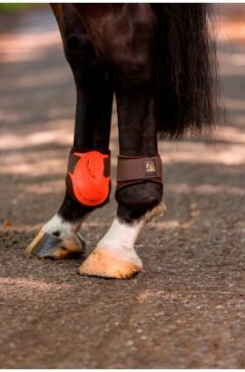 hind -golden gate- fetlock boots
