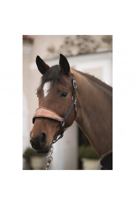 blue -moena- head collar