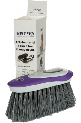 -kbf 99- dandy brush with long bristles