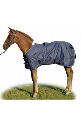 -professional- foal rug
