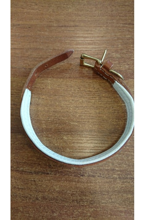 -toby- leather collar