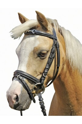 bridle + reins -shetty bit-