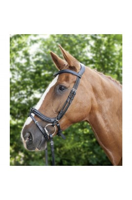-anatomic I- bridle + reins