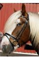 bridle + reins -black&white-