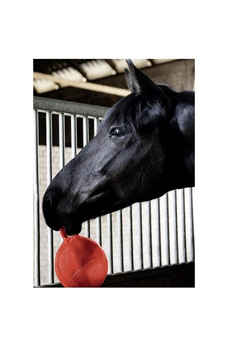 rubber ball for horses